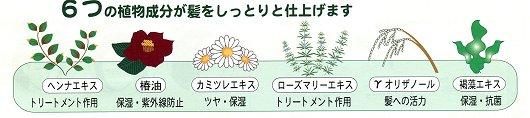 6つの植物成分が髪をしっとりと仕上げます。ヘンナエキス・椿油・カミツレエキス・γオリザノール・褐藻エキス